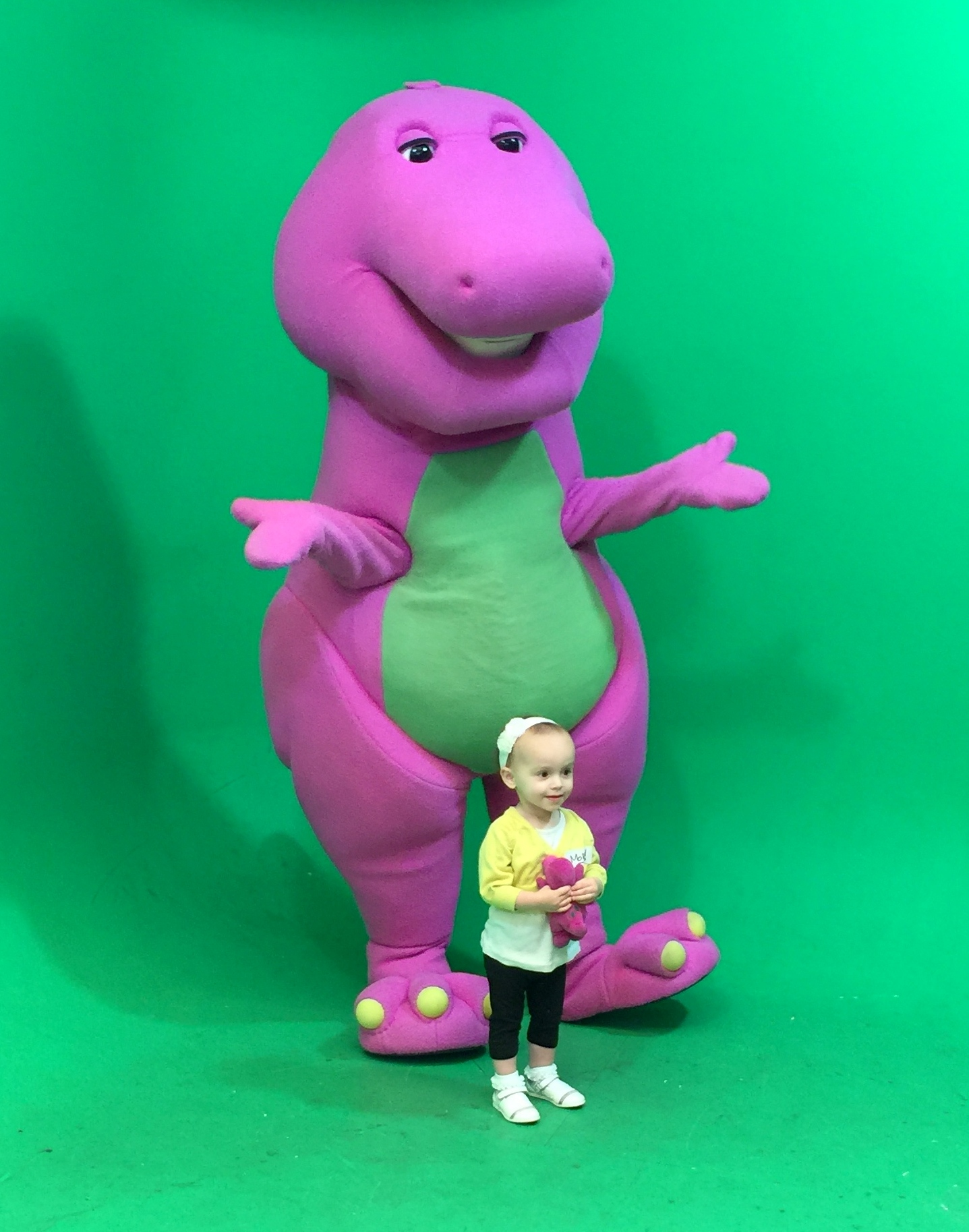 Meeting A Big Purple Dinosaur Addingup2bemum
